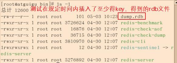 image-20210125153658285