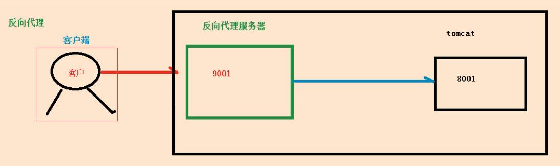 image-20210129150502501
